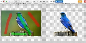 Remove Image Background Using Clipping Magic Online Tool